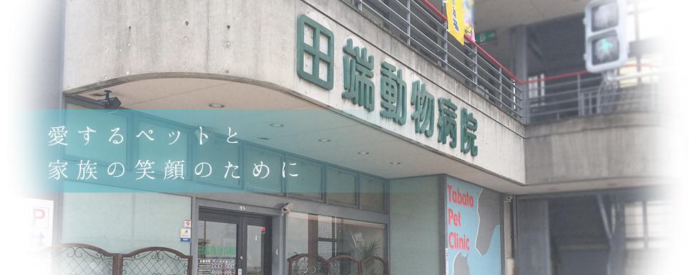 病院 川端 動物 ふくしま動物病院|東京都北区|イヌ・ネコ・ハムスターの診療